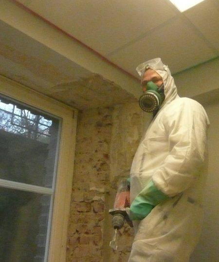 Fassadensanierung - nie ohne Schimmelpilzsanierung